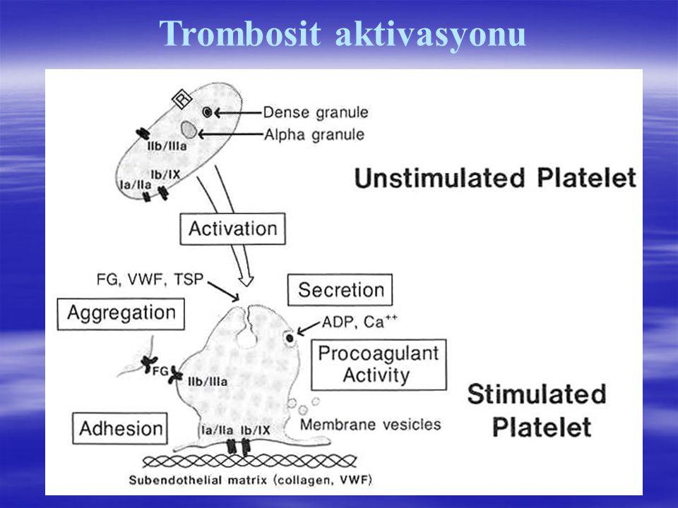 Trombosit aktivasyonu
