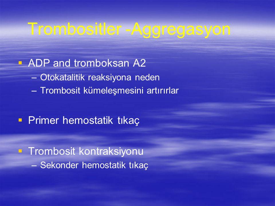 Trombositler -Aggregasyon