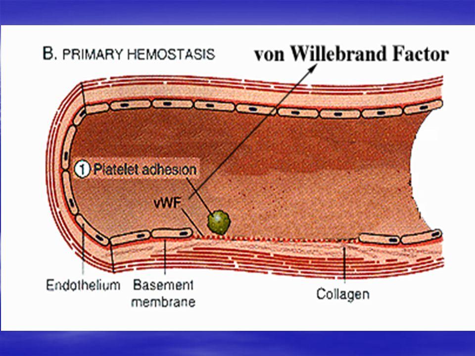 Hemostasis 1