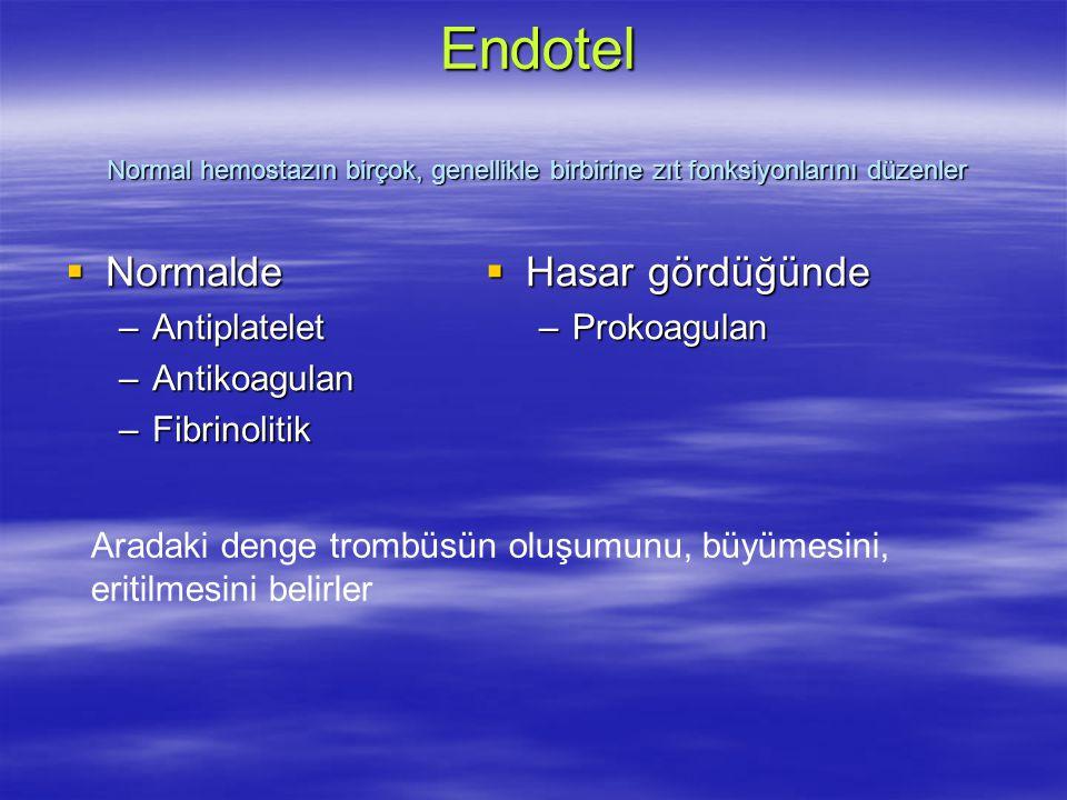 Endotel Normal hemostazın birçok, genellikle birbirine zıt fonksiyonlarını düzenler