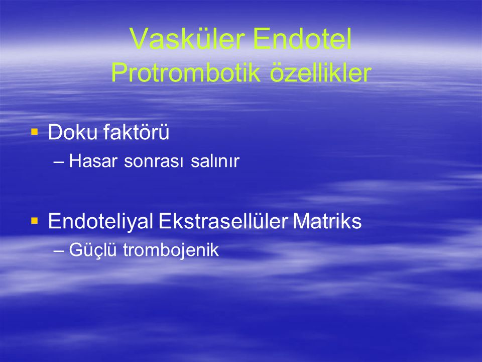 Vasküler Endotel Protrombotik özellikler