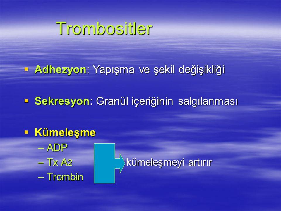 Trombositler Adhezyon: Yapışma ve şekil değişikliği