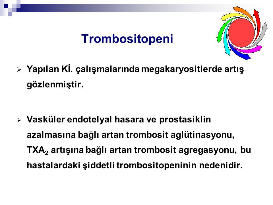 Trombositopeni Yapılan Kİ. çalışmalarında megakaryositlerde artış gözlenmiştir.