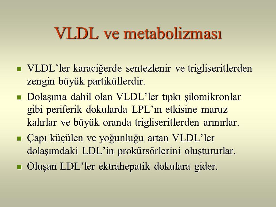 VLDL ve metabolizması VLDL'ler karaciğerde sentezlenir ve trigliseritlerden zengin büyük partiküllerdir.