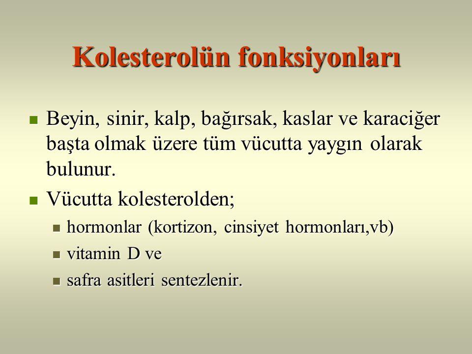 Kolesterolün fonksiyonları
