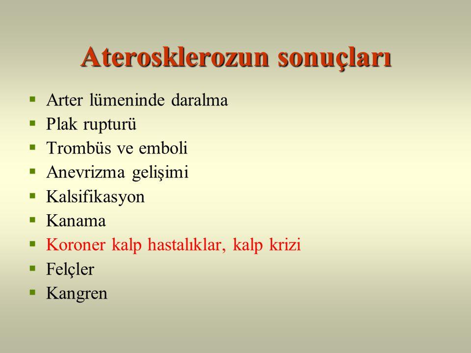 Aterosklerozun sonuçları