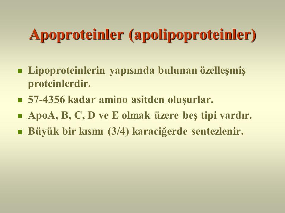 Apoproteinler (apolipoproteinler)