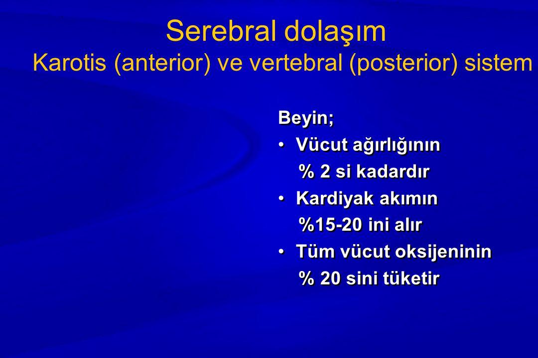 Karotis (anterior) ve vertebral (posterior) sistem