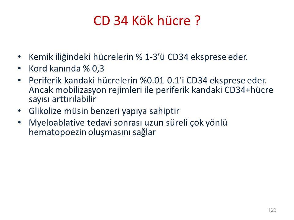 CD 34 Kök hücre Kemik iliğindeki hücrelerin % 1-3'ü CD34 eksprese eder. Kord kanında % 0,3.