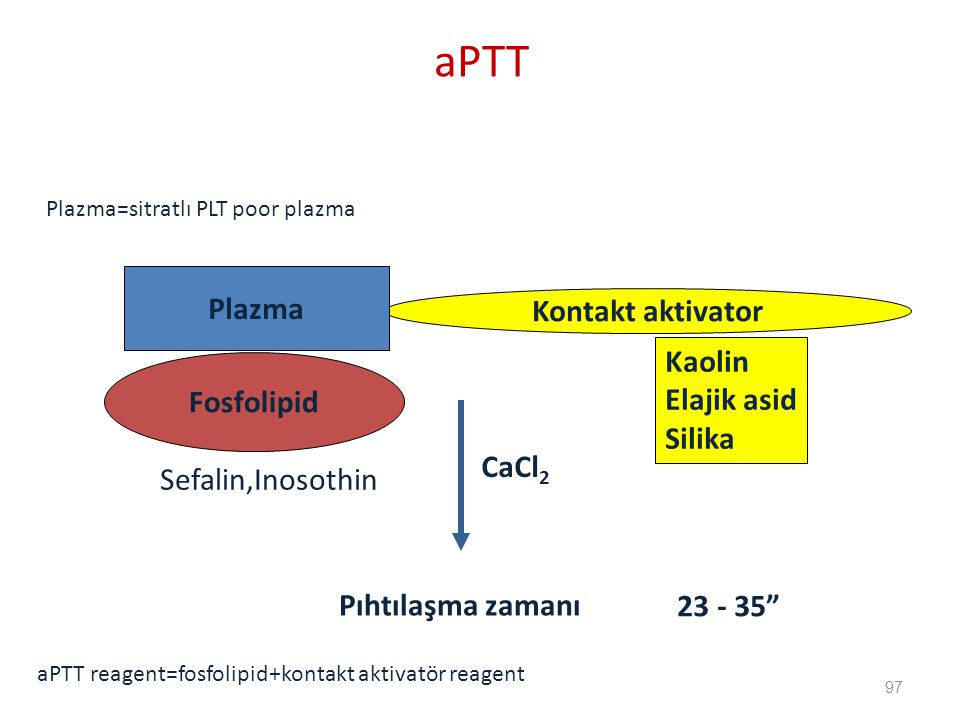 aPTT Plazma Kontakt aktivator Kaolin Elajik asid Fosfolipid Silika