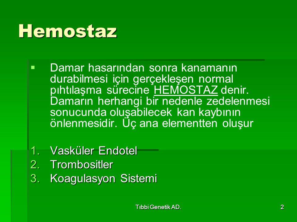Hemostaz