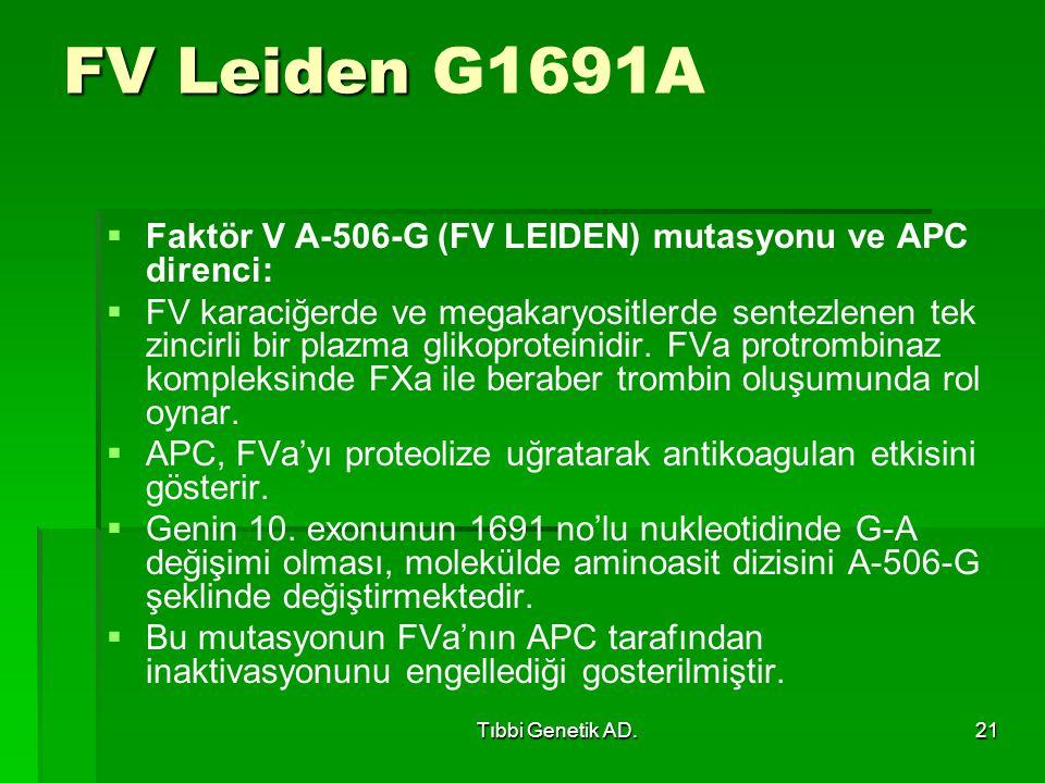 FV Leiden G1691A Faktör V A-506-G (FV LEIDEN) mutasyonu ve APC direnci: