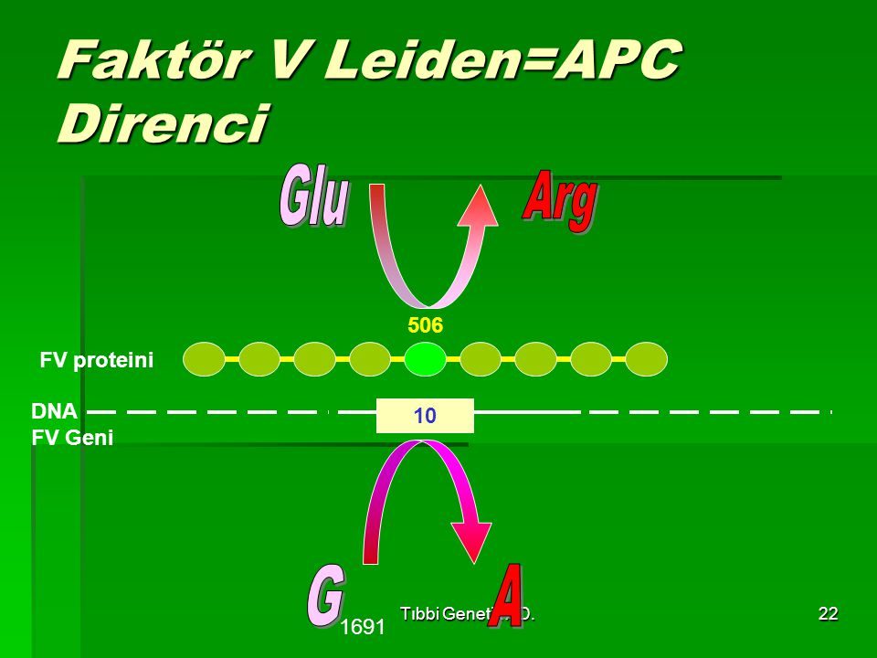 Faktör V Leiden=APC Direnci