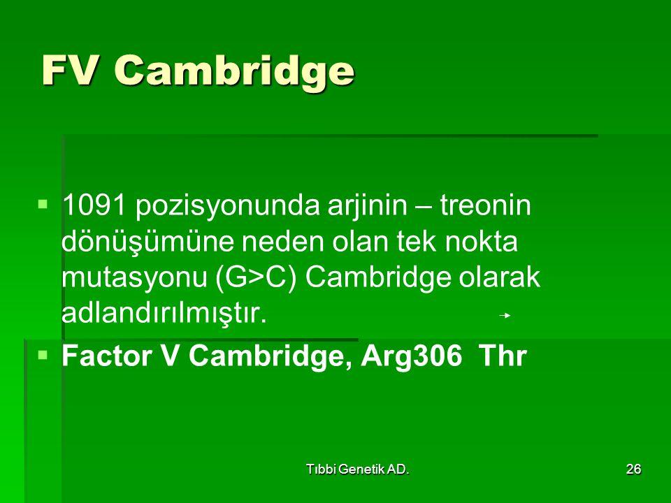 FV Cambridge 1091 pozisyonunda arjinin – treonin dönüşümüne neden olan tek nokta mutasyonu (G>C) Cambridge olarak adlandırılmıştır.