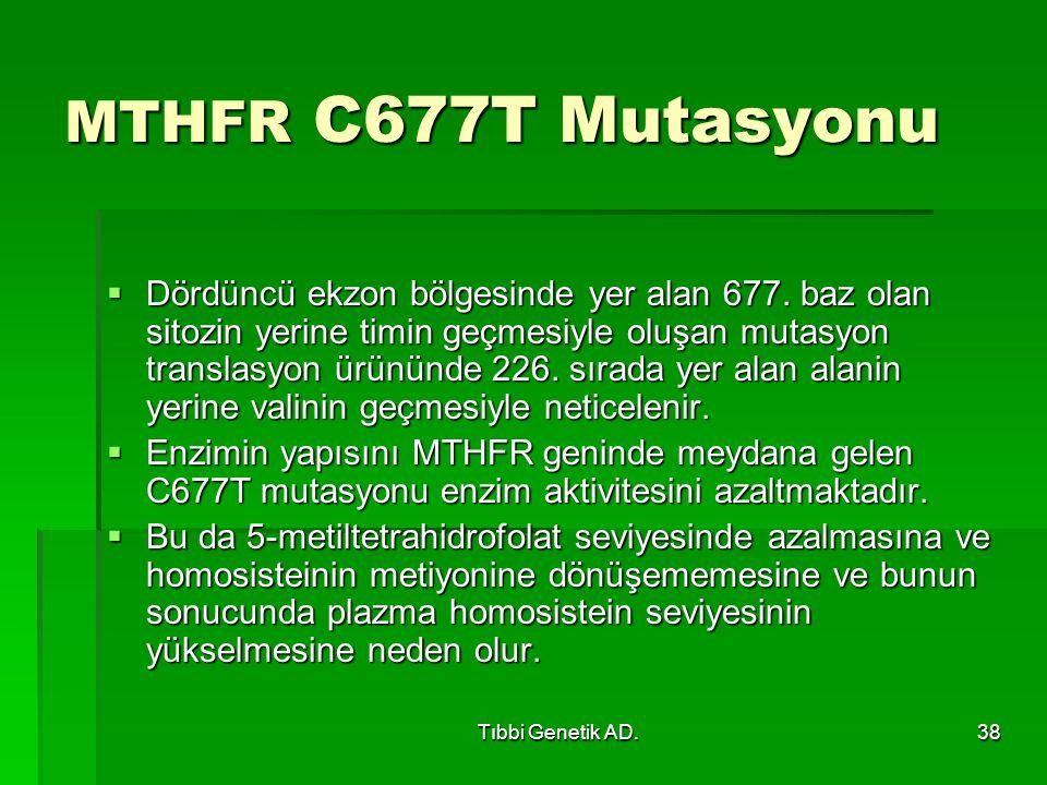 MTHFR C677T Mutasyonu