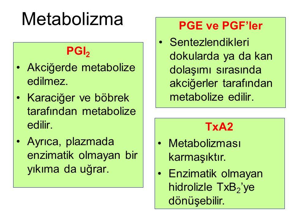 Metabolizma PGE ve PGF'ler