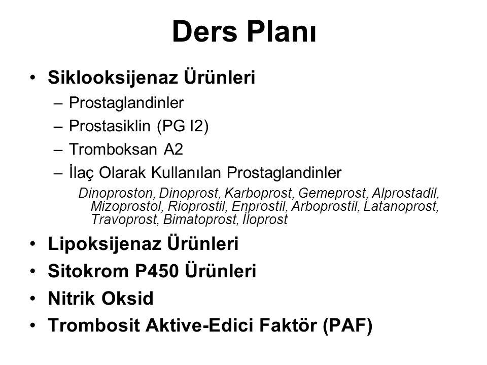 Ders Planı Siklooksijenaz Ürünleri Lipoksijenaz Ürünleri
