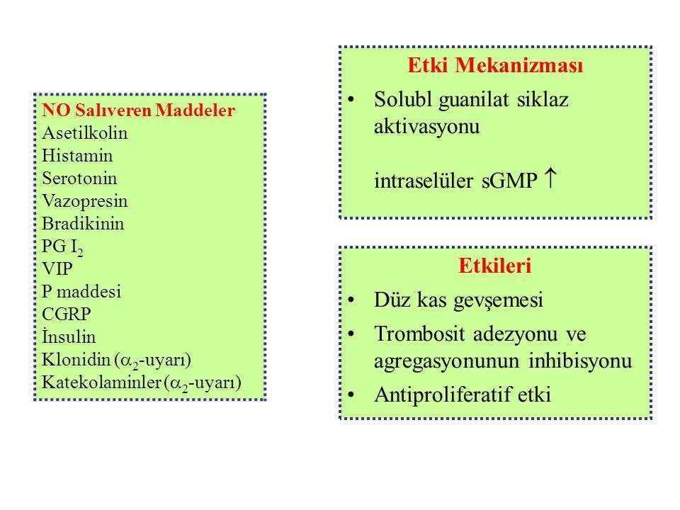 Etki Mekanizması Etkileri