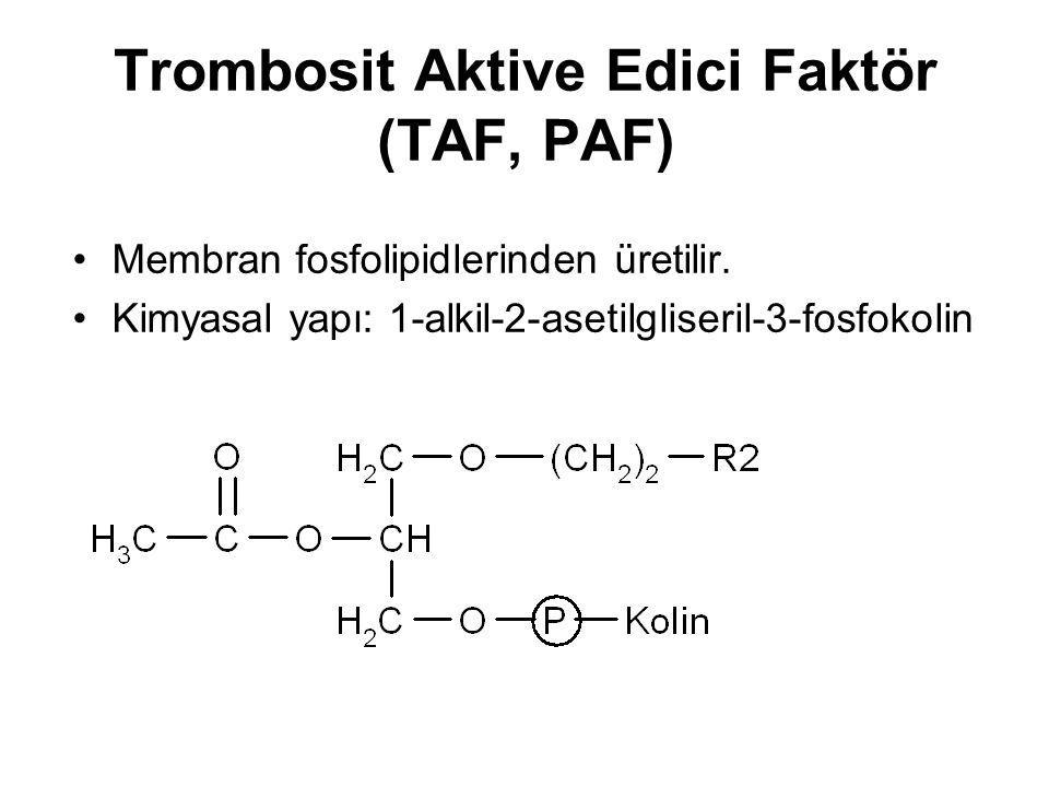 Trombosit Aktive Edici Faktör (TAF, PAF)