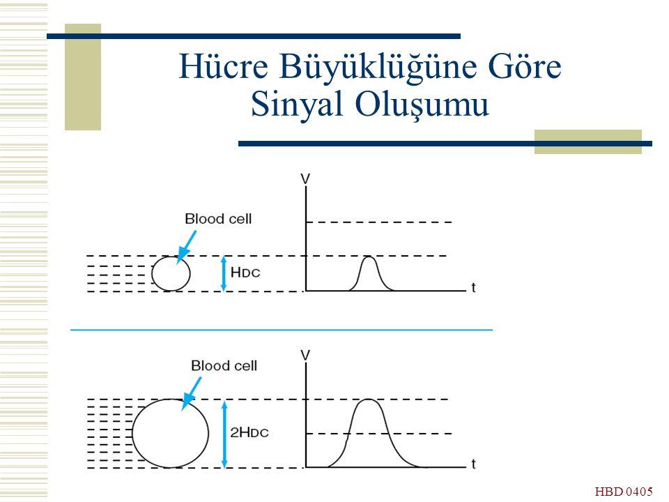 Hücre Büyüklüğüne Göre Sinyal Oluşumu