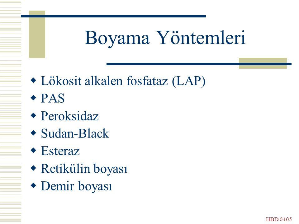 Boyama Yöntemleri Lökosit alkalen fosfataz (LAP) PAS Peroksidaz