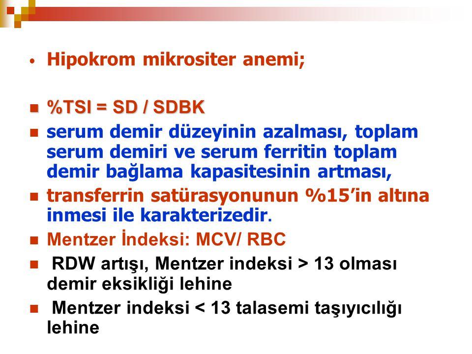 Hipokrom mikrositer anemi;