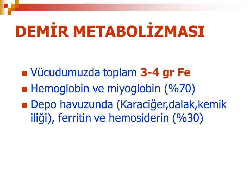 DEMİR METABOLİZMASI Vücudumuzda toplam 3-4 gr Fe