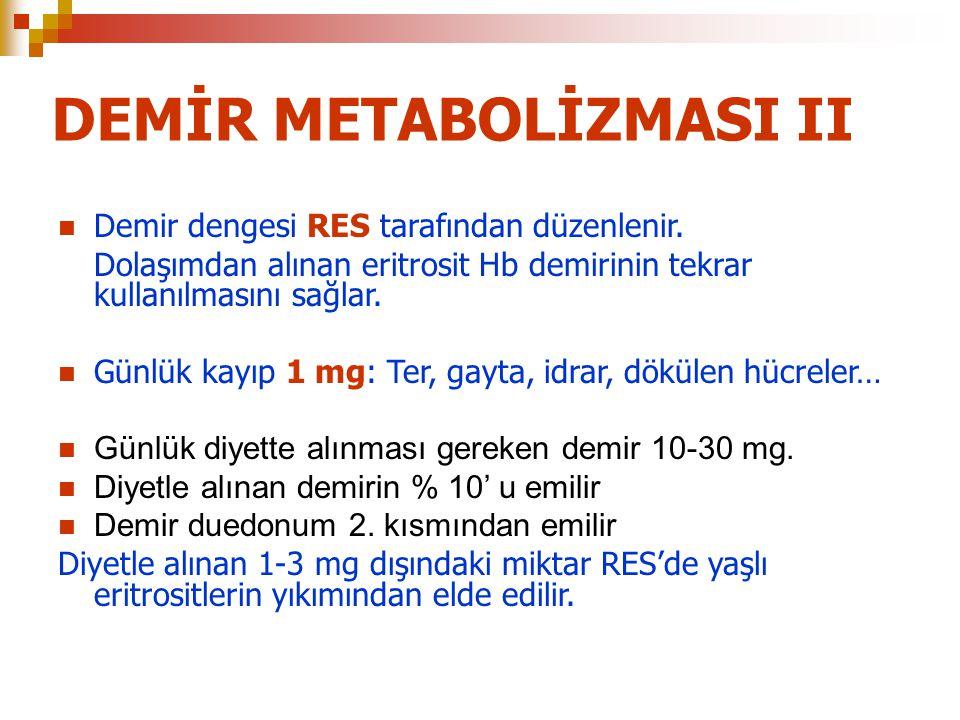 DEMİR METABOLİZMASI II