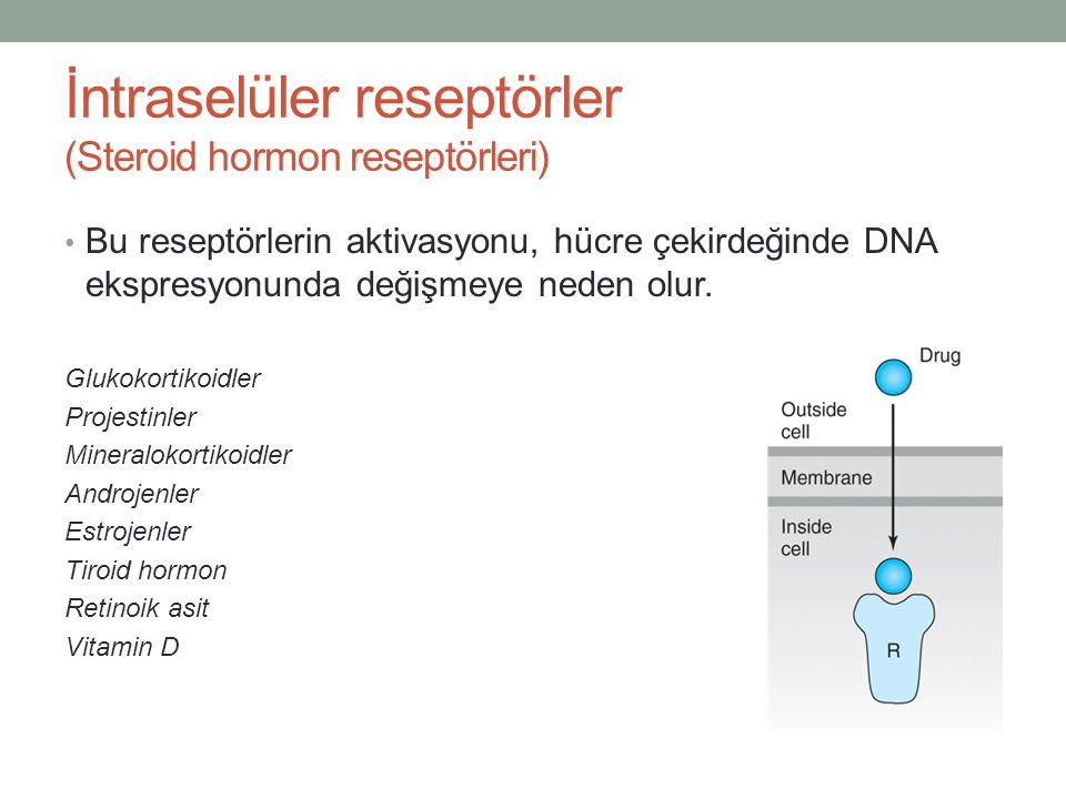 İntraselüler reseptörler (Steroid hormon reseptörleri)