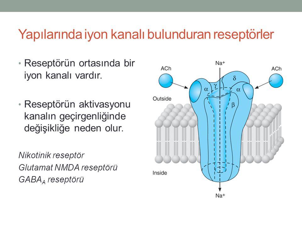 Yapılarında iyon kanalı bulunduran reseptörler