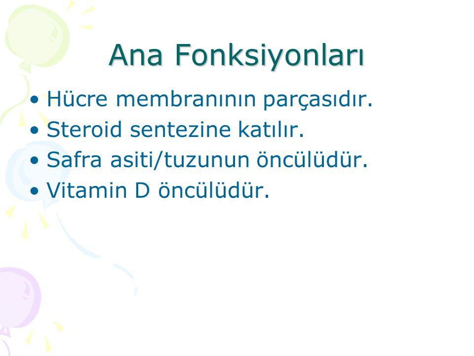 Ana Fonksiyonları Hücre membranının parçasıdır.