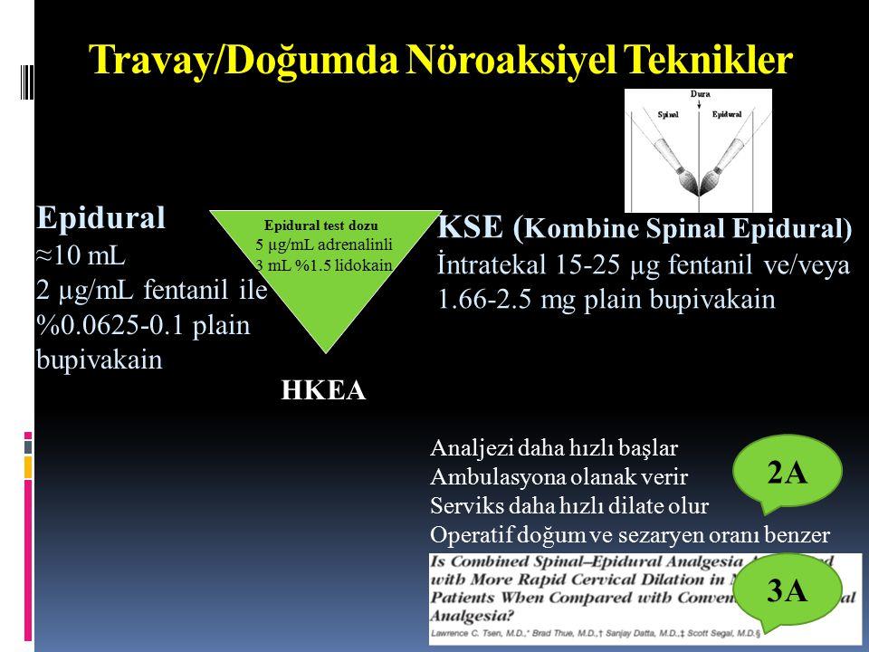 Travay/Doğumda Nöroaksiyel Teknikler