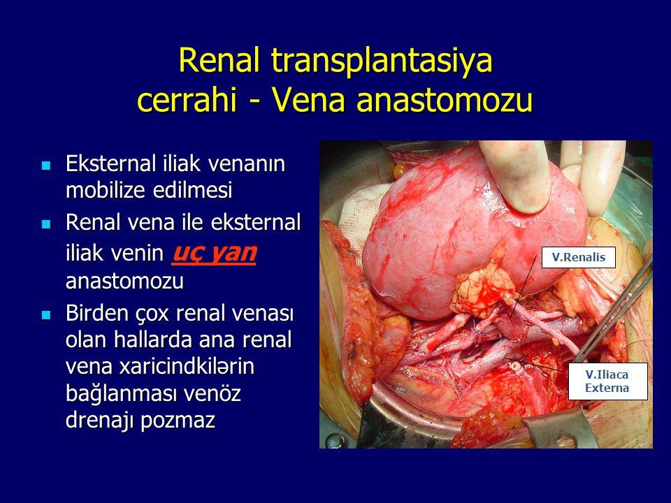 Renal transplantasiya cerrahi - Vena anastomozu