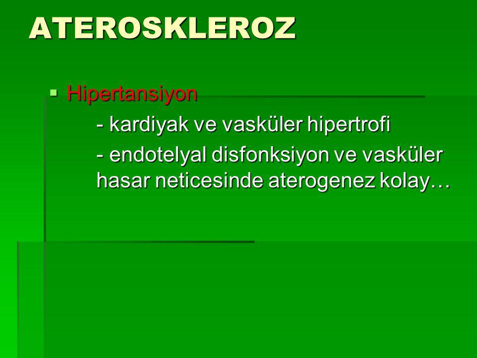 ATEROSKLEROZ Hipertansiyon - kardiyak ve vasküler hipertrofi