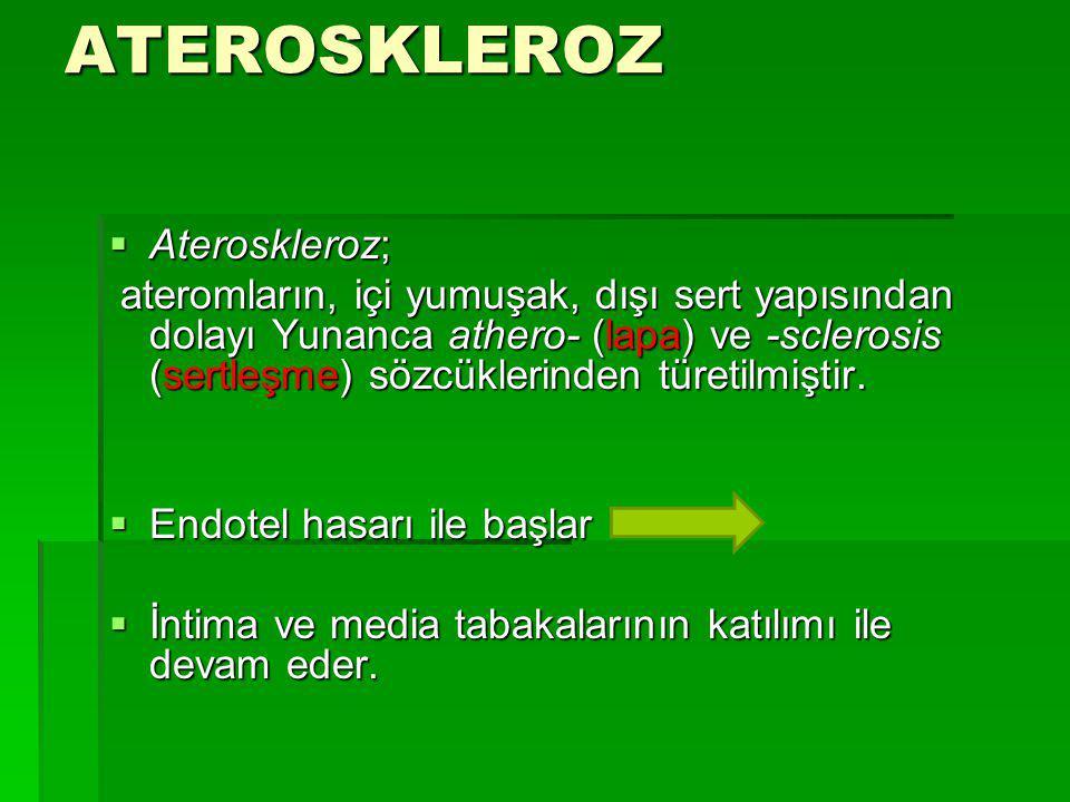 ATEROSKLEROZ Ateroskleroz;