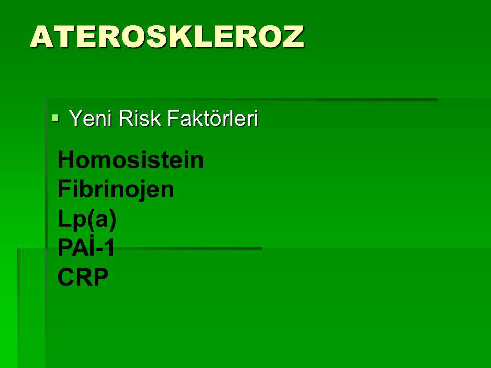 ATEROSKLEROZ Homosistein Fibrinojen Lp(a) PAİ-1 CRP