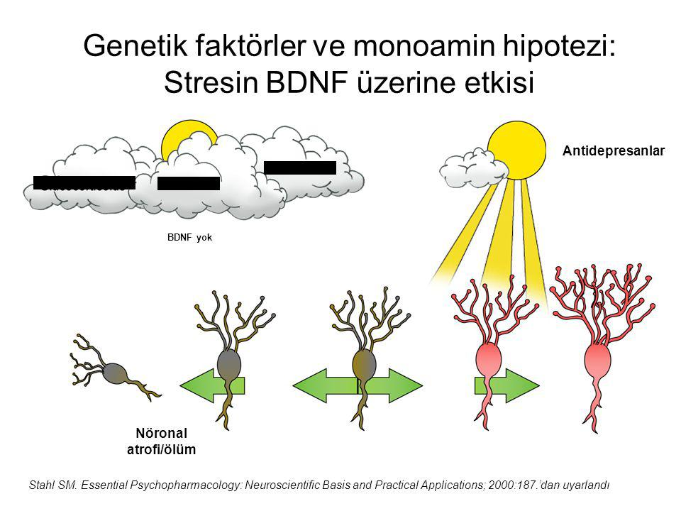 Genetik faktörler ve monoamin hipotezi: Stresin BDNF üzerine etkisi