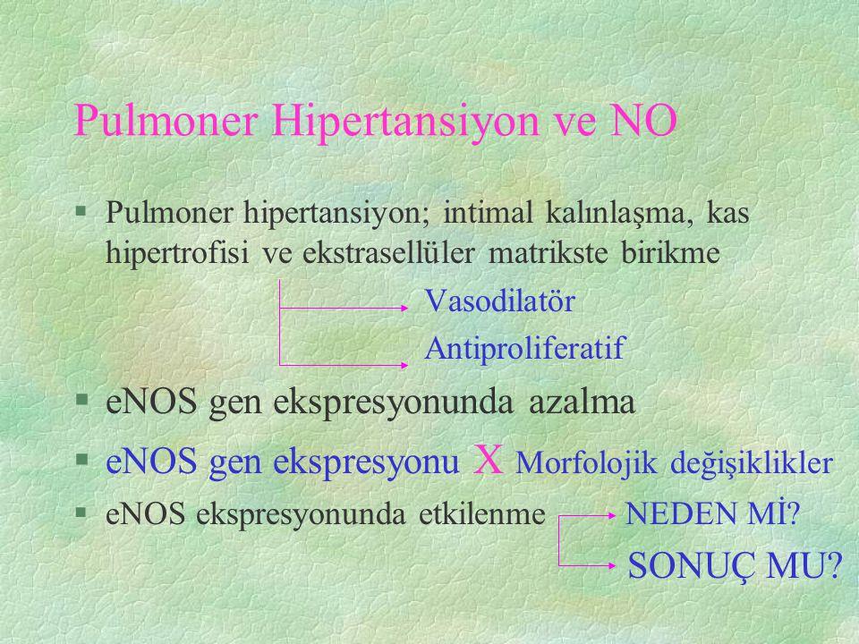 Pulmoner Hipertansiyon ve NO