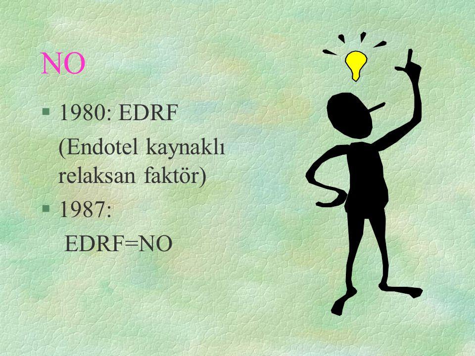 NO 1980: EDRF (Endotel kaynaklı relaksan faktör) 1987: EDRF=NO