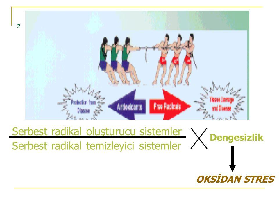, Serbest radikal oluşturucu sistemler