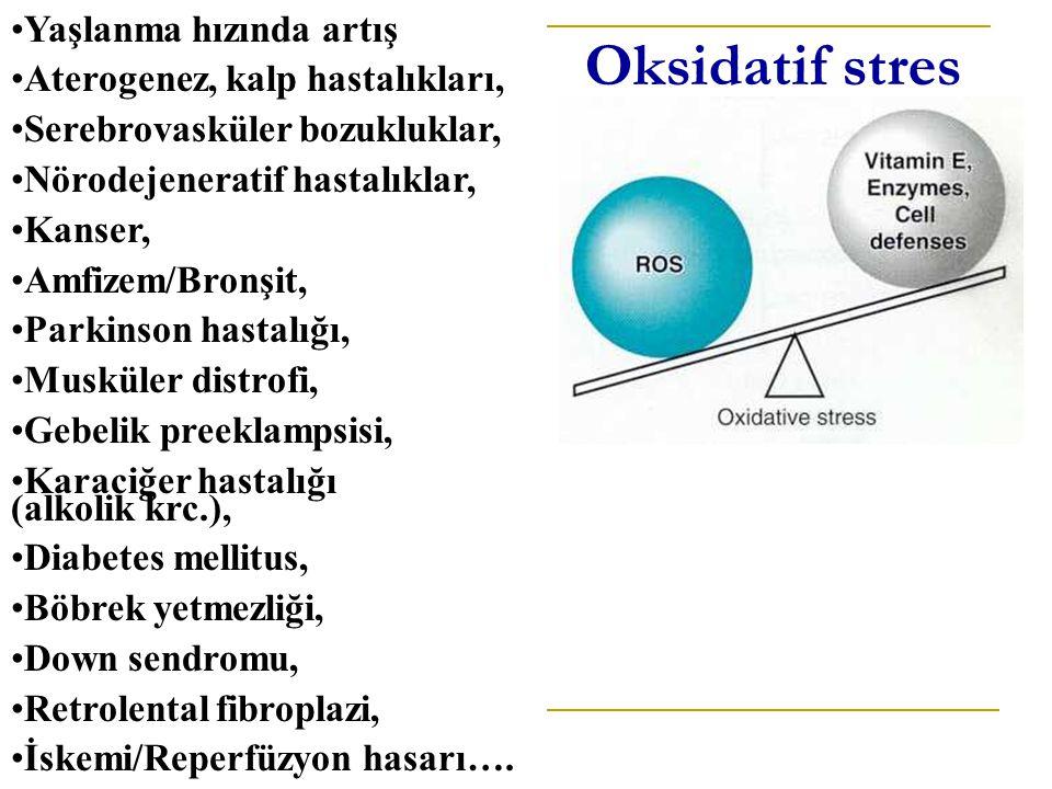 Oksidatif stres Yaşlanma hızında artış Aterogenez, kalp hastalıkları,