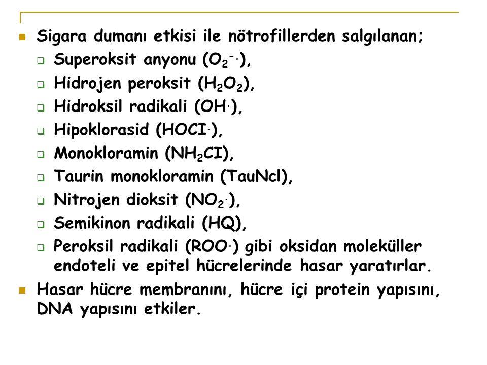 Sigara dumanı etkisi ile nötrofillerden salgılanan;