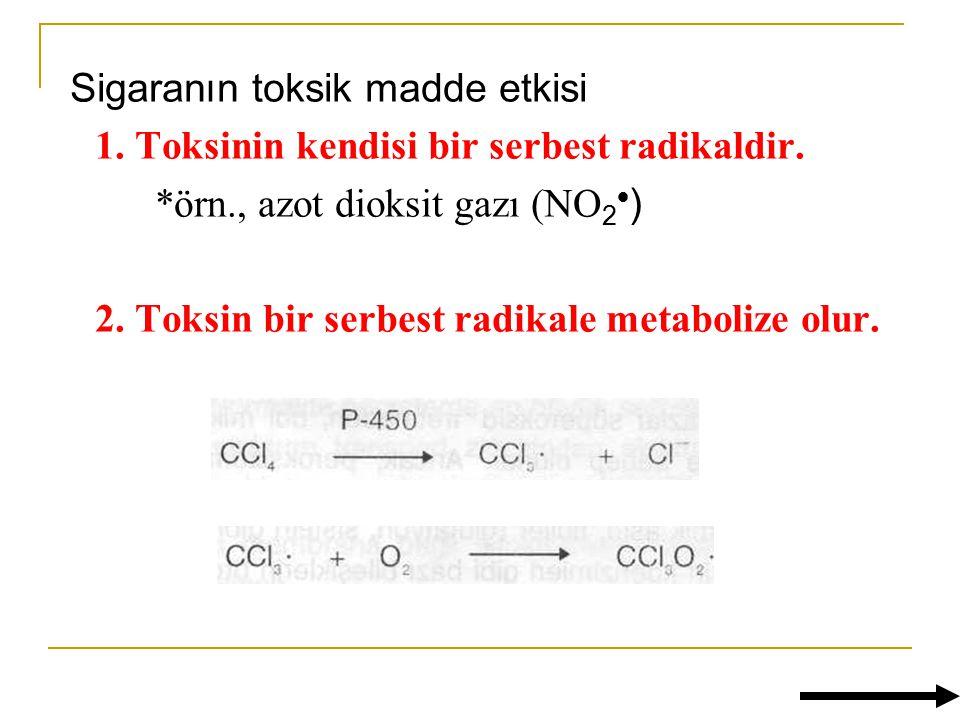 Sigaranın toksik madde etkisi