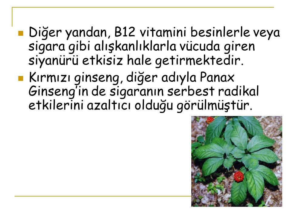 Diğer yandan, B12 vitamini besinlerle veya sigara gibi alışkanlıklarla vücuda giren siyanürü etkisiz hale getirmektedir.