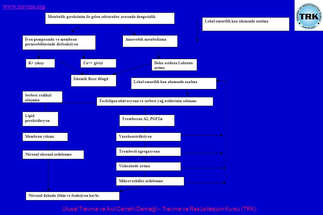 . Metabolik gereksinim ile gelen substratlar arasında dengesizlik