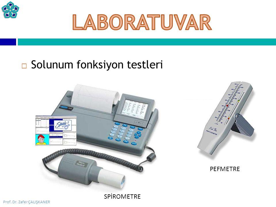 LABORATUVAR Solunum fonksiyon testleri PEFMETRE SPİROMETRE
