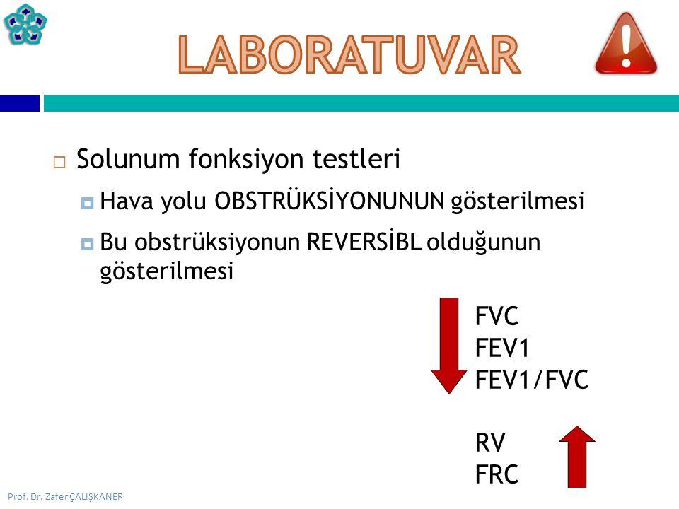 LABORATUVAR Solunum fonksiyon testleri FVC FEV1 FEV1/FVC RV FRC