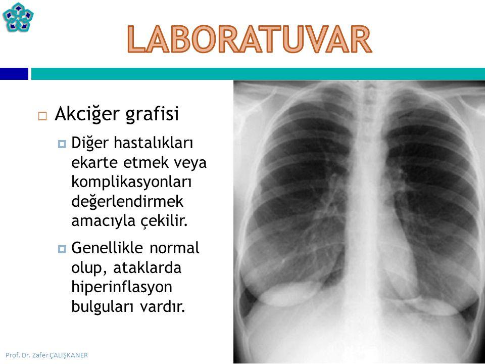 LABORATUVAR Akciğer grafisi