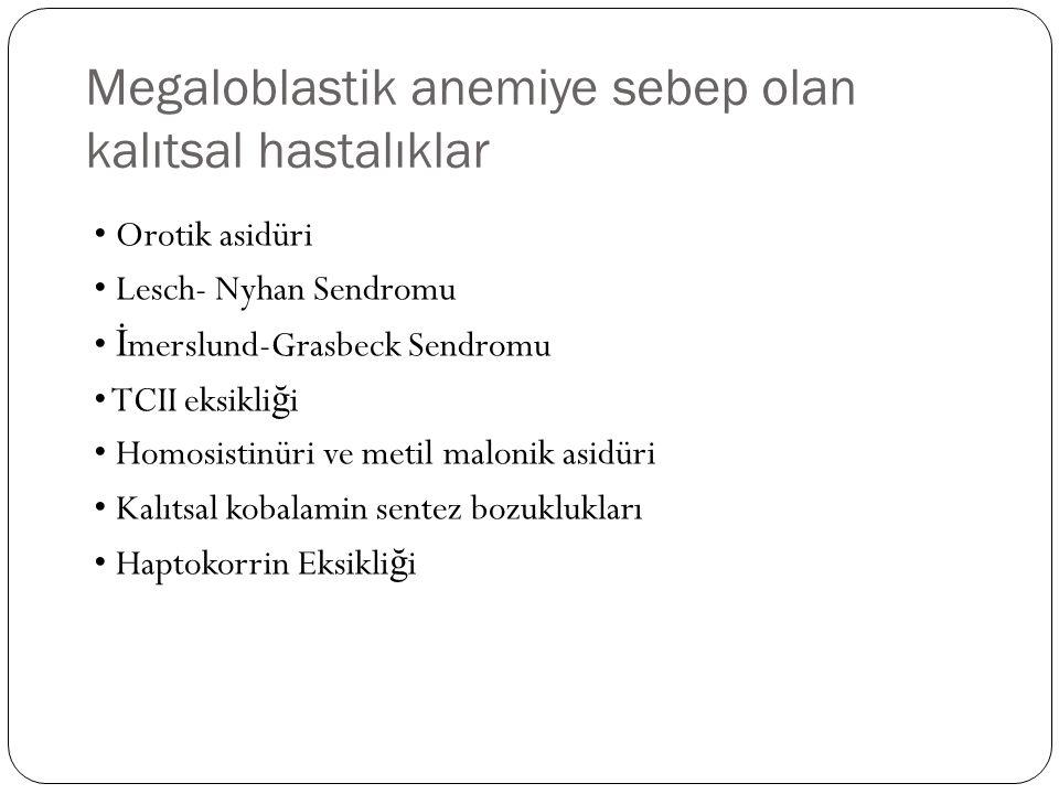 Megaloblastik anemiye sebep olan kalıtsal hastalıklar