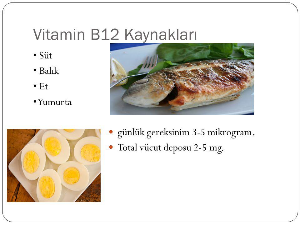 Vitamin B12 Kaynakları • Süt • Balık • Et • Yumurta